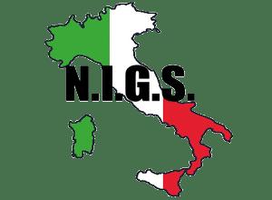Brand Logo for NIGS